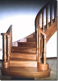 escalier-courbe-orme 1